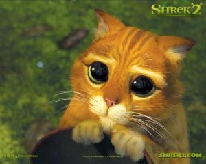 542413shrek gato con botas 300x240 Imagenes tiernas para compartir