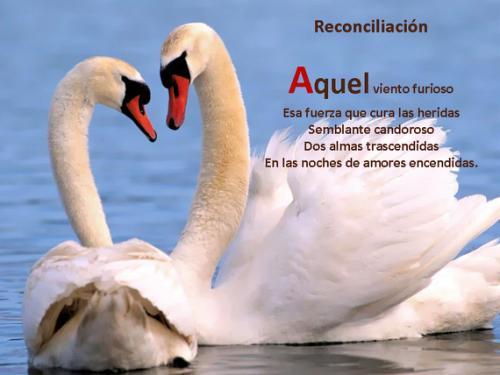Reconciliacion imagen tierna e1340054960955 Imágenes tiernas de reconciliación
