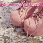 zapatos botas 150x150 Imágenes de zapatos
