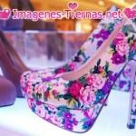 zapatos de color 150x150 Imágenes de zapatos