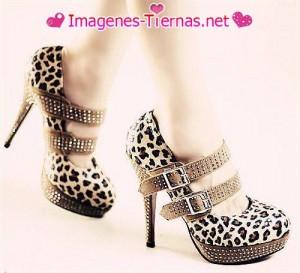 zapatos de leopardo 300x273 zapatos de leopardo