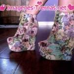 zapatos de mujer 150x150 Imágenes de zapatos