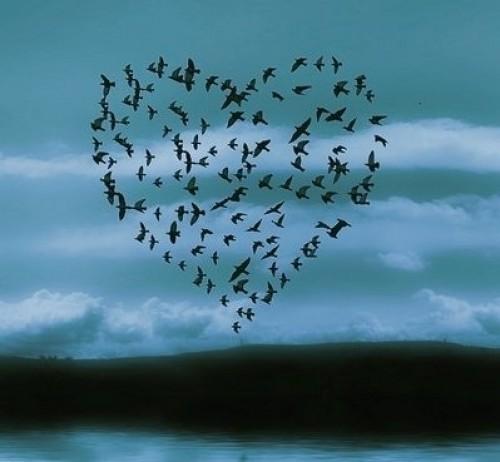 imagenes romanticas - imagenes tiernas