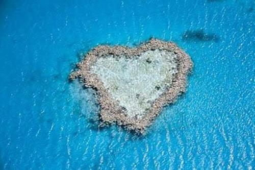 Arrecife de coral e1345300496451 Imágenes de corazones en la playa