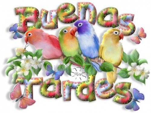 Buenas tardes e1344105345968 Imágenes tiernas para dar las buenas tardes