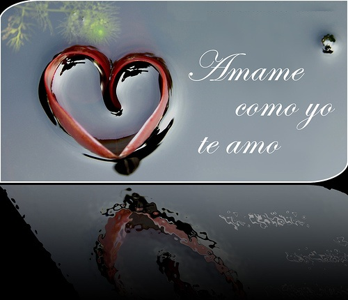 """amame como yo a ti imágenes de amor: """"Quiéreme como yo te quiero a ti"""""""