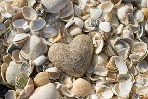 corazon de arena y conchas e1345300418191 Imágenes de corazones en la playa