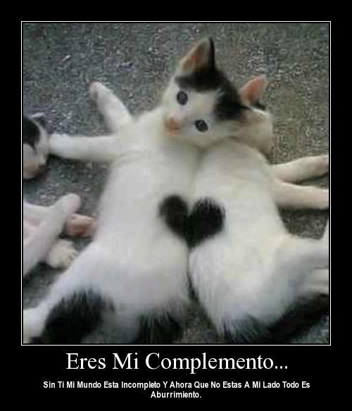 """eres mi complemento Imágenes de amor """"Eres mi complemento"""""""