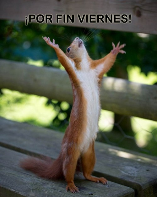 Imgenes para compartir: Por fin es viernes (Imagenes para Facebook)