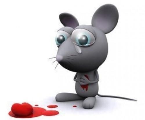 ratoncito triste e1346855321114 Imágenes lindas de ratoncitos para compartir