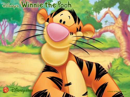 tiger e1346768572175 Imágenes tiernas de Tiger