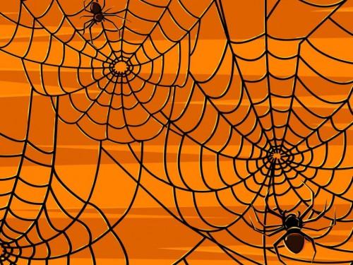 Spiders e1351181339775 Imágenes de Halloween
