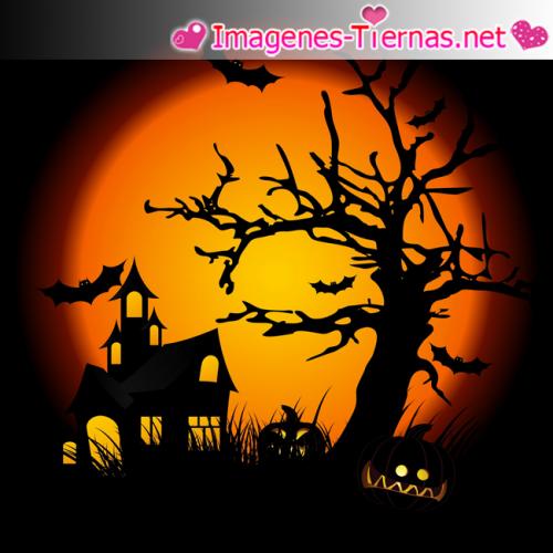 feliz halloween 2012 e1351692881424 Feliz noche de brujas   Halloween 2012