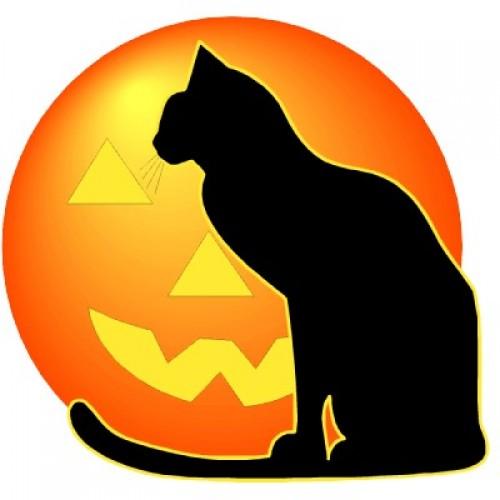 gatos para halloween calabaza e1351614081987 Imágenes de gatos negros de Halloween