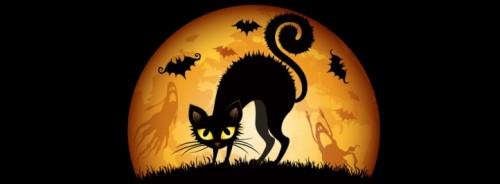 portada facebook halloween gato negro e1351614102666 Imágenes de gatos negros de Halloween