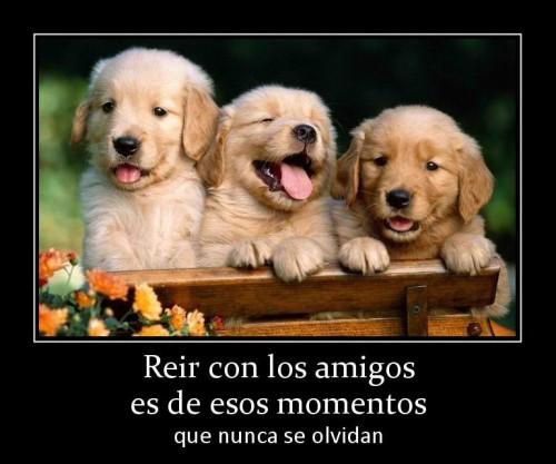 """reir con los amigos es de esos momentos e1350574676587 Imágenes de amistad: """"Momentos de amigos"""""""
