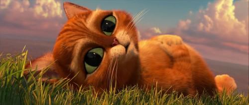 El gato con botas HD 720p latino 2011 cap 2 e1354022969728 Imágenes tiernas del Gato con botas bebé