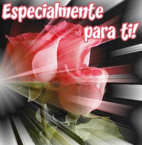 Especialmente para ti e1352828315931 Postales románticas de flores