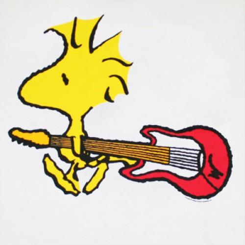 Woodstock Guitar White Shirt e1353082816132 Imágenes tiernas de Emilio (Woodstock)