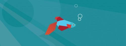 portada-para-facebook-de-peces