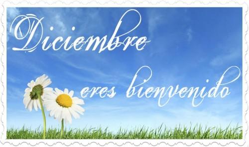 """Diciembre eres bienvenido e1354373749269 Imágenes tiernas de """"Bienvenido Diciembre"""""""