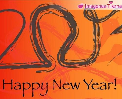 Las mejores imagenes de Feliz año nuevo 2013 40 500x406 Las mejores imagenes del Feliz año nuevo 2013 (80 imagenes)