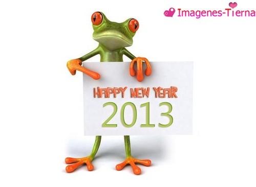Las mejores imagenes de Feliz año nuevo 2013 67 500x366 Las mejores imagenes del Feliz año nuevo 2013 (80 imagenes)
