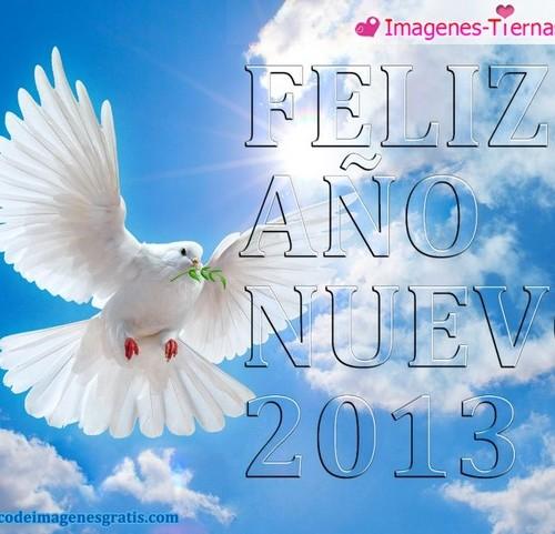 Las mejores imagenes de Feliz año nuevo 2013 71 500x481 Las mejores imagenes del Feliz año nuevo 2013 (80 imagenes)