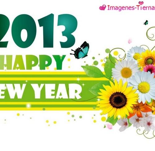 Las mejores imagenes de Feliz año nuevo 2013 76 500x488 Las mejores imagenes del Feliz año nuevo 2013 (80 imagenes)
