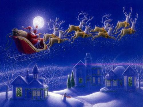 noel renos e1354847461362 Imágenes tiernas de los renos de Santa