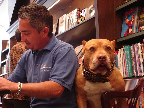 cesar millan and daddy dog whisperer pit bull rapper redman Imágenes tiernas de Pitbulls