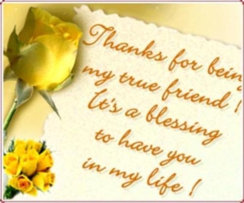 friendship day e cards Imágenes de amistad con mensajes en inglés