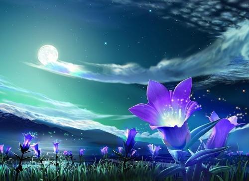 paisajes romanticos de noche Imágenes de paisajes románticos