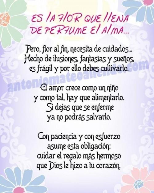 poesiaparaenamorados 24048 e1359035643752 Imágenes de poemas para el día de San Valentín