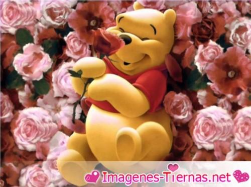 winnie enamorado e1359385246153 Imágenes de Winnie Pooh Enamorado