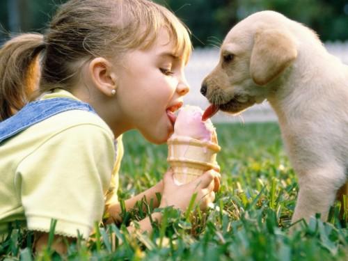 Amistad animal y humana e1360002520460 Imágenes de amistad entre humanos y animales