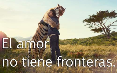 tigre y humano el amor no tiene fronteras amistad  e1360002791180 Imágenes de amistad entre humanos y animales