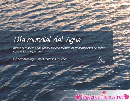 Dia Mundial del Agua 011 22 de Marzo Día Mundial del Agua