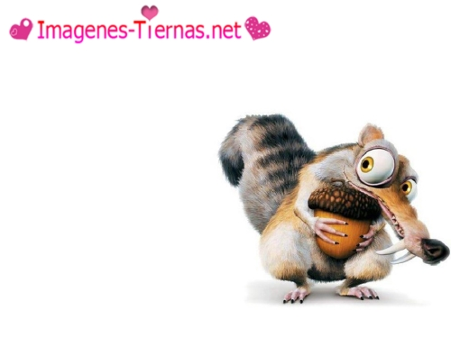 Scrat Ice Age Imágenes Tiernas de Scrat