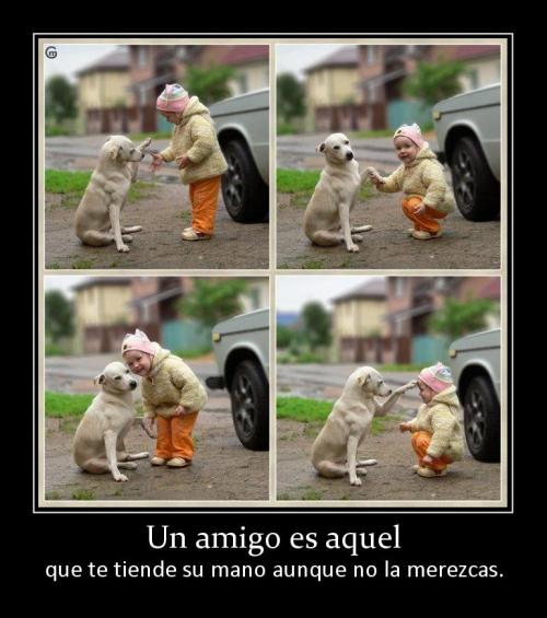 Amigo es Aquel (Imagenes para Facebook)