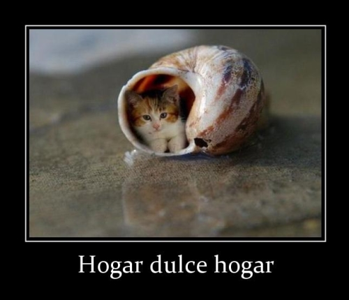 692 hogar dulce hogar Hogar Dulce Hogar