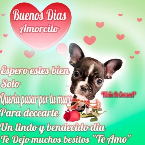 image3 500x500 Imágenes Lindas para desear Buenos días Mi Amor