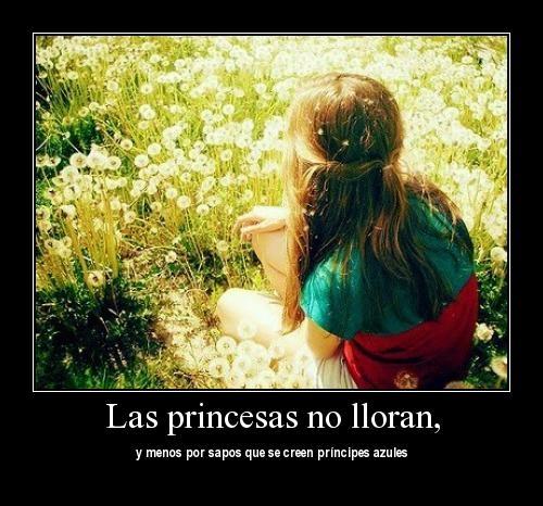 desmotivaciones 18 Las Princesas no lloran