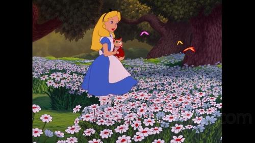 alicia en el pais de las maravillas disney blu ray alice in the wonderland 5 Imágenes Bonitas de Alicia en el País de la Maravillas