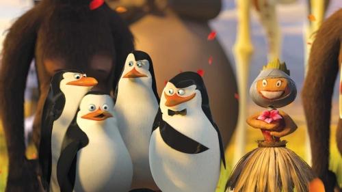 los pinguinos de madagascar Imágenes Tiernas de Los Pingüinos de Madagascar