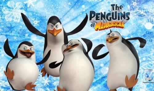 wallpapers pinguinos madagascar Imágenes Tiernas de Los Pingüinos de Madagascar