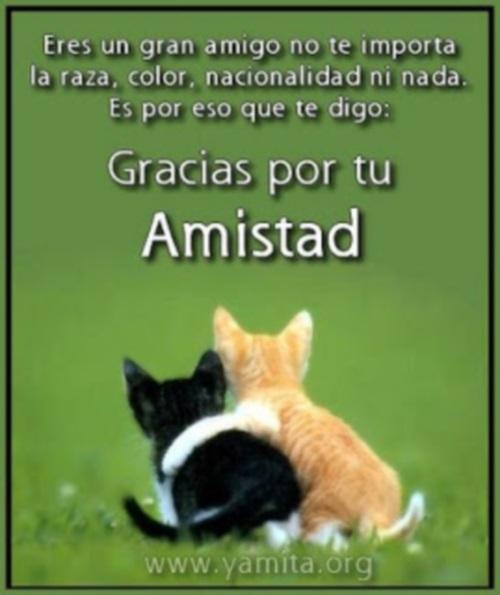 Eres un gran amigo gracias por tu amistad Eres Un Gran Amigo