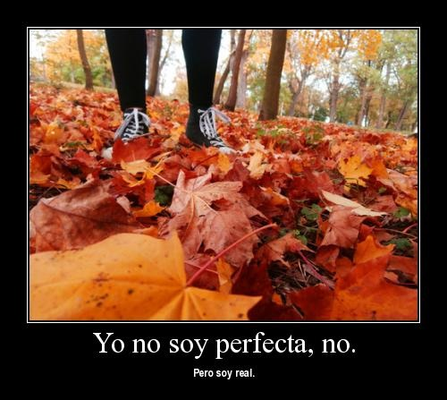 ich No soy perfecta pero...