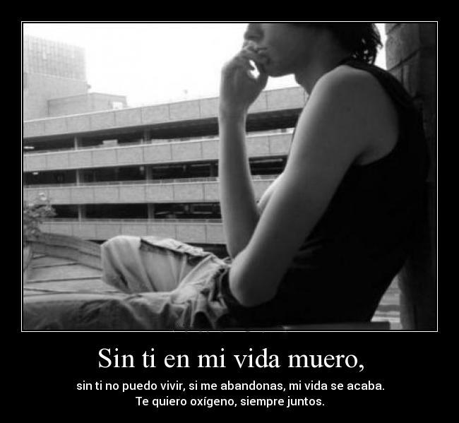 1212466345 f La vida sin ti