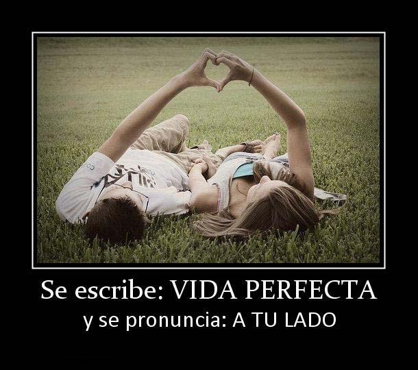 137522 se escribe vida perfecta La vida perfecta a tu lado